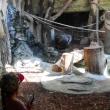 004-zoo20129